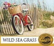 Wild Sea Grass